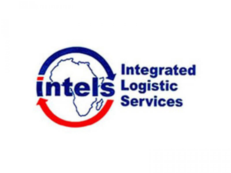 INTELS-Logo
